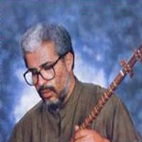 سید جلال الدین محمدیان